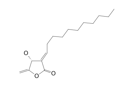 SUBAMOLIDE-E;(4R,3E)-4-HYDROXY-5-METHYLENE-3-UNDECYLIDENE-DIHYDROFURAN-2-ONE