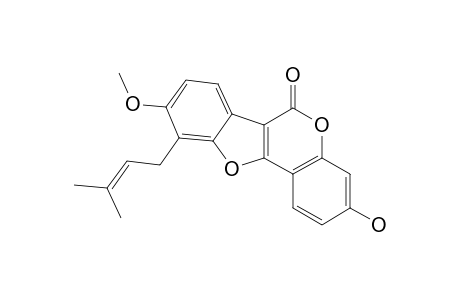 ERYTHRIBYSSIN_N;3-HYDROXY-9-METHOXY-10-(3-METHYLBUT-2-ENYL)-COUMESTAN